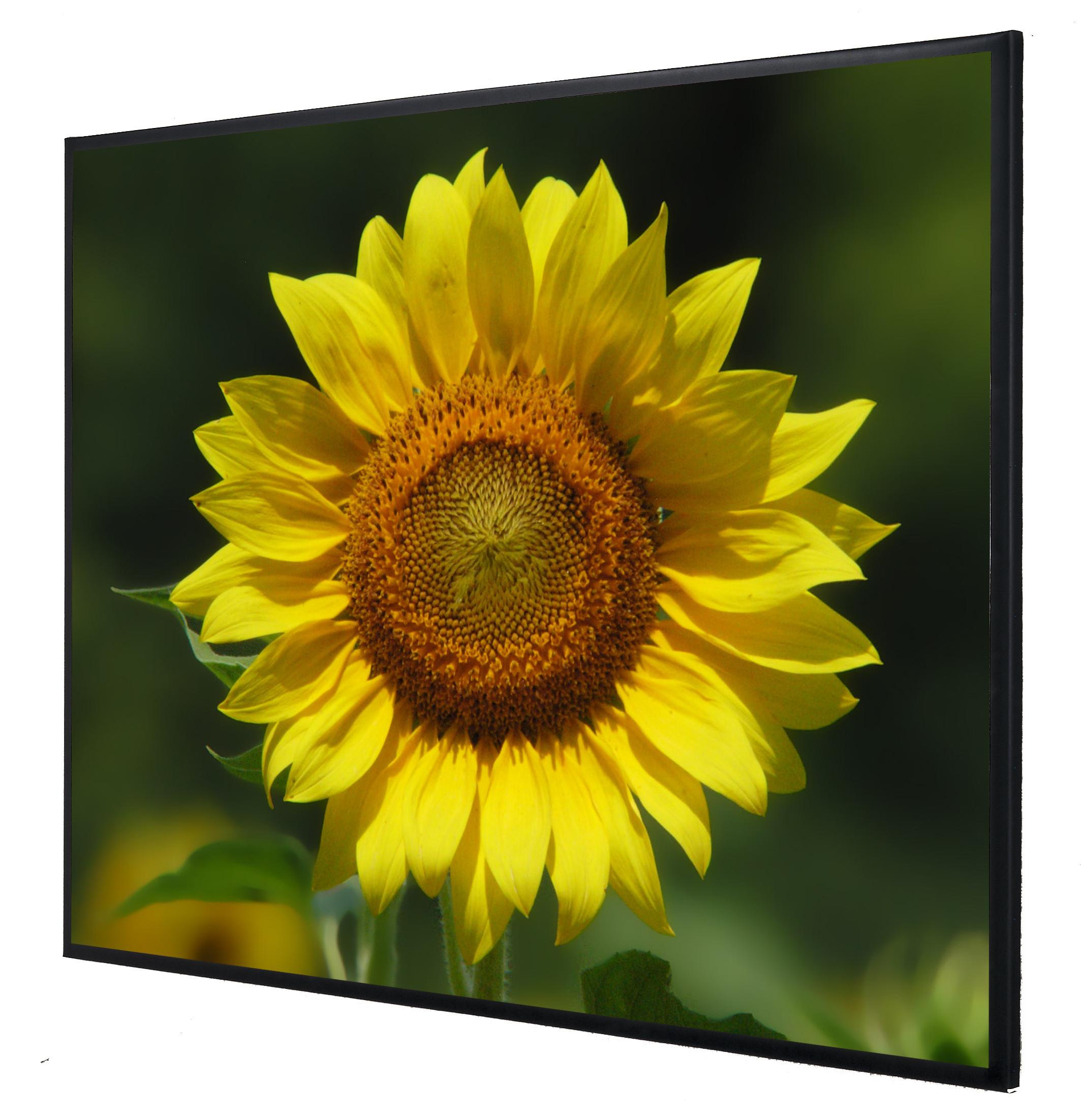 Vision Light 190 x 142,5 cm video format med Veltex og ReAct filmdug