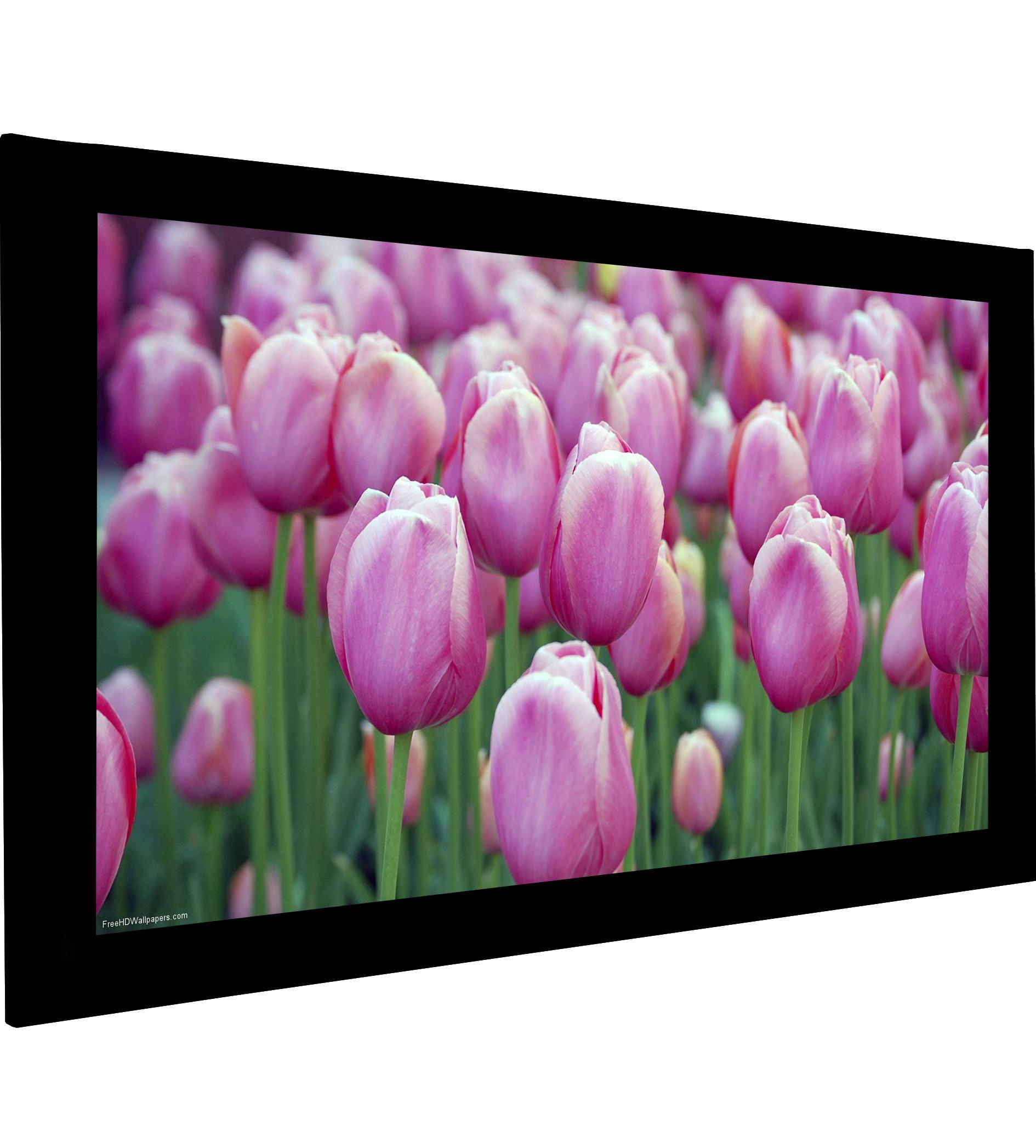 Frame Vision 350 x 197 cm med Flex White filmdug og Veltex