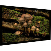 Vision Light 160 x 90 cm widescreen og ReAct filmdug